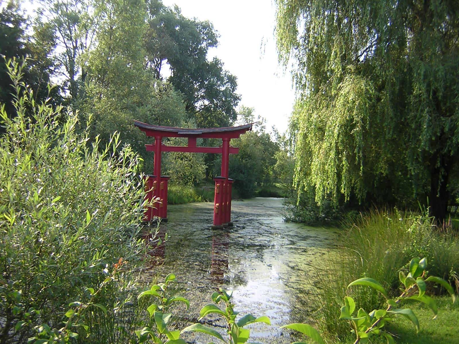 Un Jardin Japonais A Vesoul Abeilles Et Petites Mains