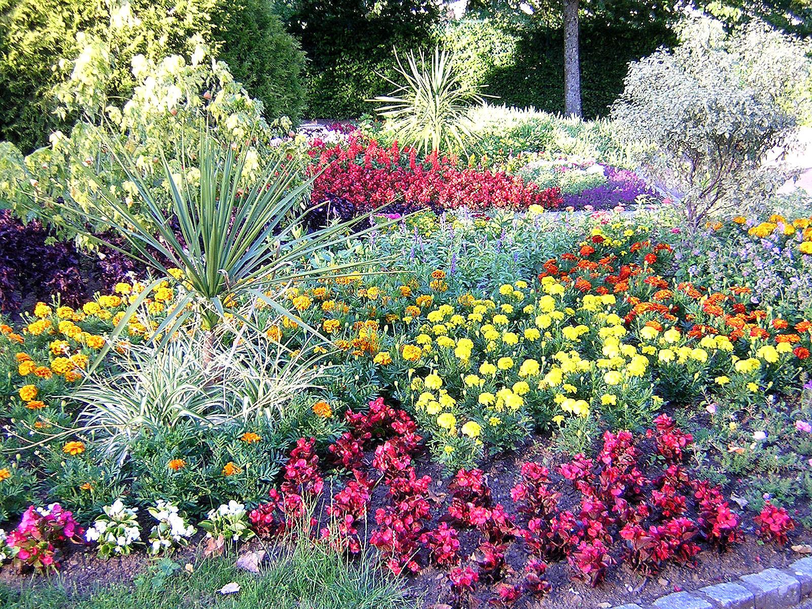 Le jardin anglais de vesoul abeilles et petites mains - Photos de jardins anglais ...