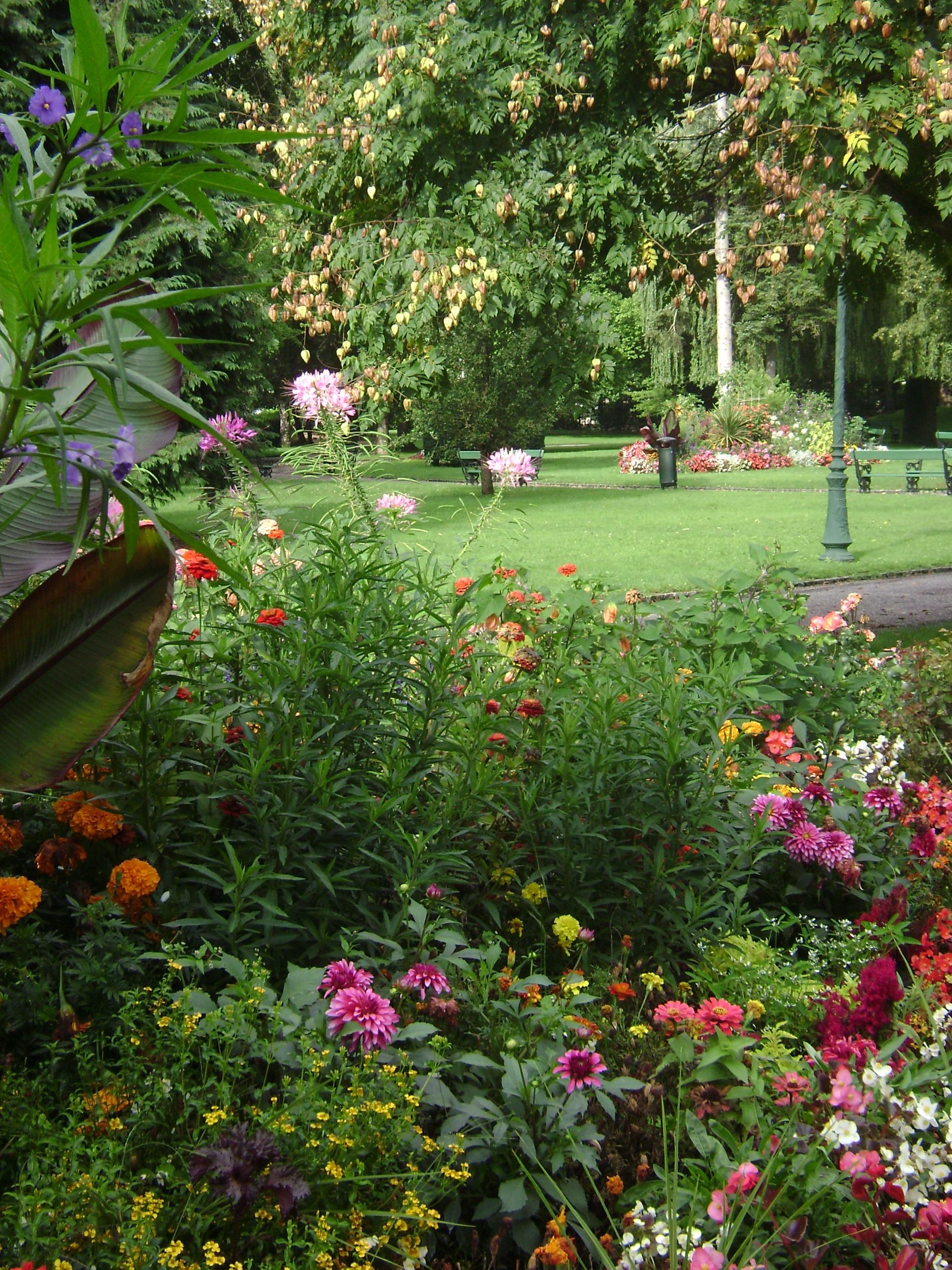 Lumi re d t sur le jardin anglais de vesoul abeilles for Image de jardin anglais